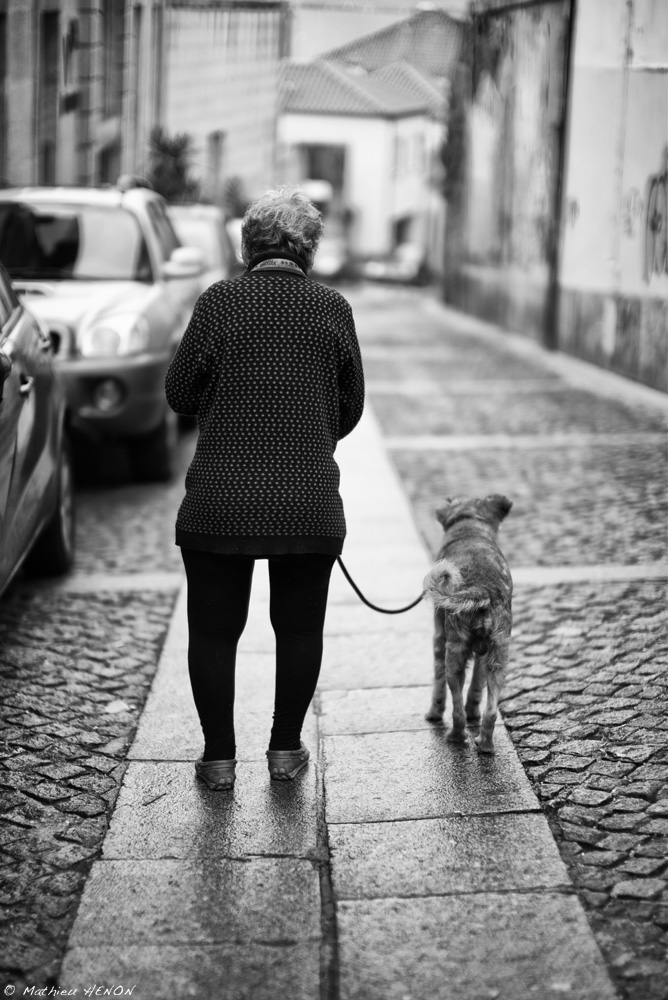 La sortie du chien.jpg