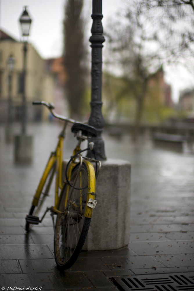 Le vélo jaune.jpg