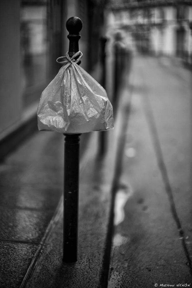 Le sac en plastique.jpg