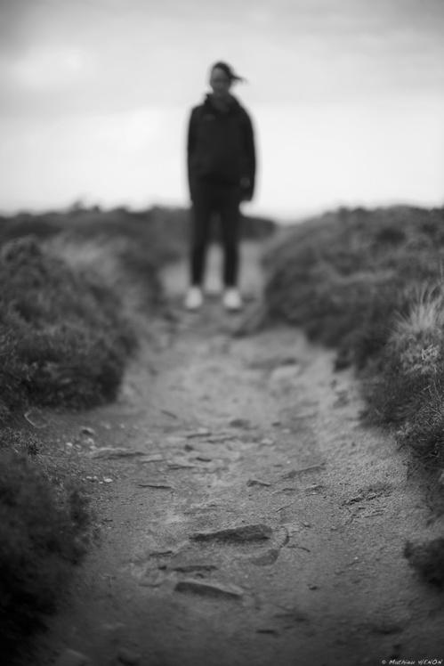 Chemin faisant.jpg